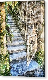 The Open Gate Acrylic Print by Shirley Stalter