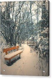The Orange Bench Acrylic Print by Tara Turner