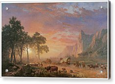 The Oregon Trail Acrylic Print by Albert Bierstadt