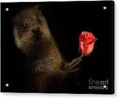 Acrylic Print featuring the photograph The Otter by Christine Sponchia