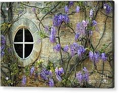 The Oval Window Acrylic Print by Tim Gainey