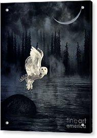 The Owl And Her Mystical Moon Acrylic Print by Heather King