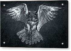 The Owl 2 Acrylic Print