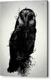 The Owl Acrylic Print by Nicklas Gustafsson