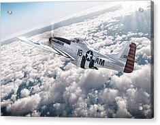 The P-51 Mustang Acrylic Print by David Collins