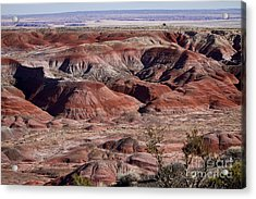 The Painted Desert  8062 Acrylic Print by James BO  Insogna
