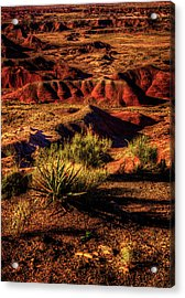 The Painted Desert From Kachina Point Acrylic Print