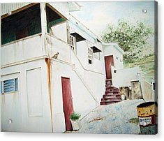 The Painters House Acrylic Print by Brian Degnon