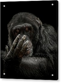 The Palm Reader Acrylic Print by Paul Neville