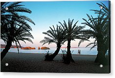 The Palmforest Of Vai - The Pardise Of Crete Acrylic Print