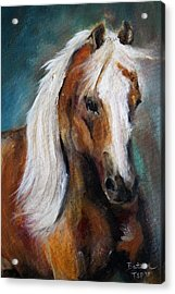 The Palomino I Acrylic Print by Barbie Batson