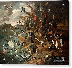 The Parliament Of Birds Acrylic Print