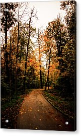 The Path Acrylic Print by Annette Berglund