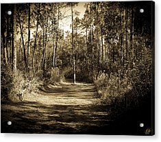 The Path Before Me, No. 6 Acrylic Print