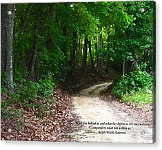 The Path Acrylic Print by Ginger Howland