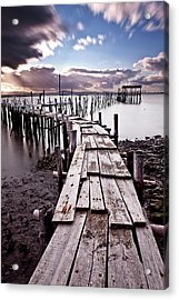 Acrylic Print featuring the photograph The Path by Jorge Maia