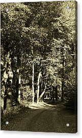Acrylic Print featuring the photograph The Path Less Traveled by John Schneider