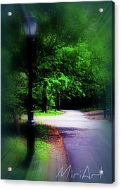 Acrylic Print featuring the photograph The Path by Miriam Shaw