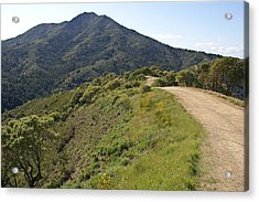 The Path To Tamalpais Acrylic Print