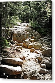 The Path To The Mountain Top Acrylic Print by Garth Glazier