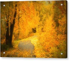 The Pathway Of Fallen Leaves Acrylic Print by Tara Turner