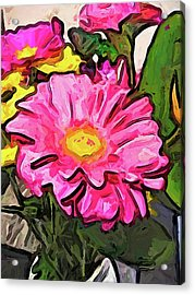 The Pink And Yellow Flowers With The Big Green Leaves Acrylic Print