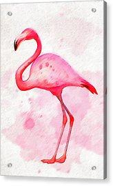 The Pink Flamingo Acrylic Print