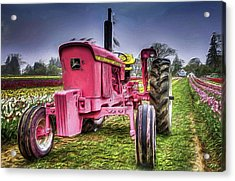 Acrylic Print featuring the photograph The Pink Tractor At The Wooden Shoe Tulip Farm by Thom Zehrfeld