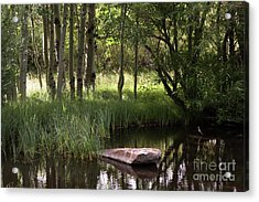 The Pond  Acrylic Print