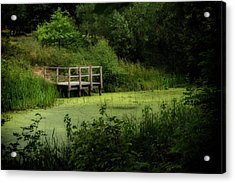 Acrylic Print featuring the photograph The Pond by Jeremy Lavender Photography