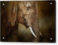 The Powerful Elephant Acrylic Print