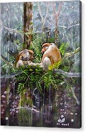 The Probosis Monkey Family Acrylic Print by Muyang Kumundan