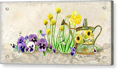 The Promise Of Spring - Pansy Acrylic Print by Audrey Jeanne Roberts