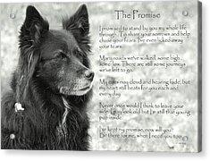 The Promise Acrylic Print
