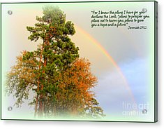 The Promises Of God Acrylic Print by Kathy  White