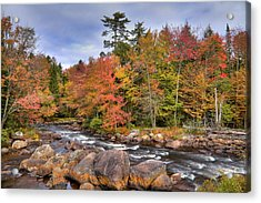 Acrylic Print featuring the photograph The Rapids On The Moose River by David Patterson