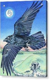 The Raven  Acrylic Print by Antony Galbraith