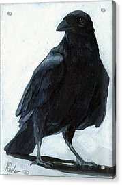 The Raven Acrylic Print by Linda Apple