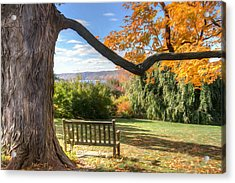The Reading Bench Acrylic Print by Zev Steinhardt