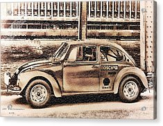 The Real Beetle Acrylic Print by Nicole Frischlich