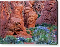 The Red And The Blue Acrylic Print by Christine Till