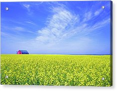 Acrylic Print featuring the photograph The Red Barn by Keith Armstrong