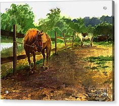 Acrylic Print featuring the painting The Red Pony by Sergey Zhiboedov