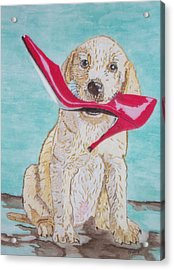 The Red Slipper  Acrylic Print by Connie Valasco