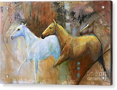 The Reflection Of The White Horse Acrylic Print by Frances Marino