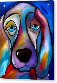 The Regal Beagle - Dog Pop Art By Fidostudio Acrylic Print by Tom Fedro - Fidostudio