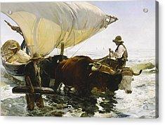 The Return From Fishing Acrylic Print by Joaquin Sorolla