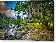 The River At Cocora Acrylic Print