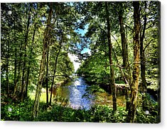 Acrylic Print featuring the photograph The River At Covewood by David Patterson