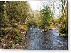 The River At Horner Acrylic Print